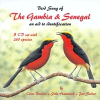 Bird Song from the Gambia & Senegal