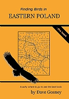 Finding Birds in Eastern Poland