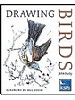 Drawing Birds