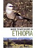 Where to Watch Birds in Ethiopia