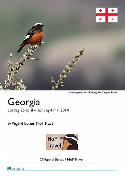 NoF Travel turrapport - Georgia 2014