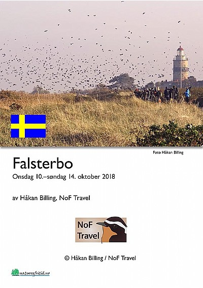 NoF Travel turrapport - Falsterbo 2018